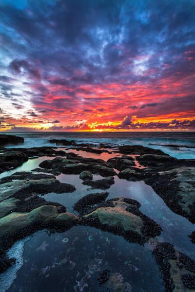 Wall Art - Photograph - Cape Arago Tidepools by Robert Bynum