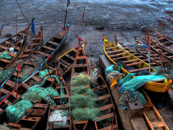 Photograph - Cape Coast Fishing Canoes  by Wayne King