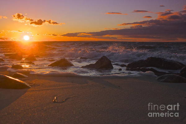 Photograph - Cape Cod Beauty by Amazing Jules
