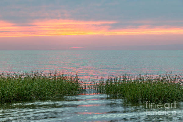 Encounter Bay Photograph - Cape Cod Ripples by Susan Cole Kelly