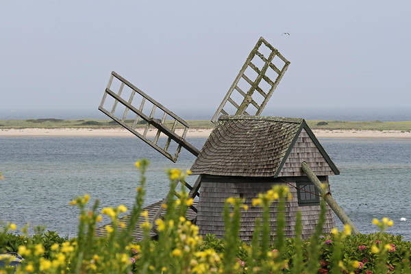 Photograph - Cape Cod Windmill by Juergen Roth