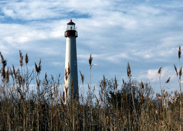 Cape May Lighthouse Photograph - Cape May Light by Skip Willits