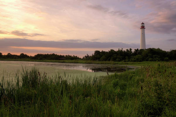 Photograph - Cape May Lighthouse II by Tom Singleton