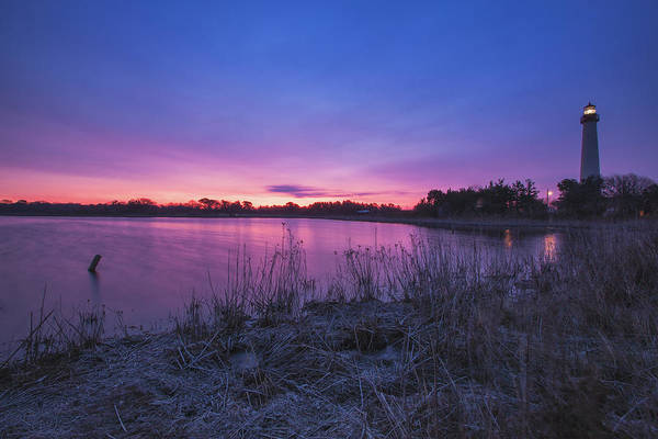 Photograph - Cape May Point Winter Dawn by Tom Singleton