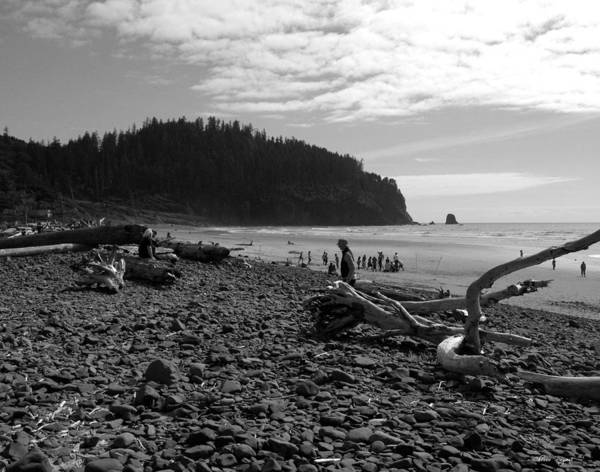 Photograph - Cape Meares by Chriss Pagani