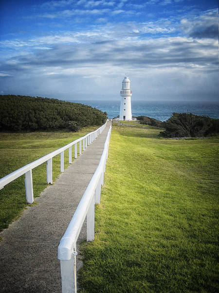 Photograph - Cape Otway by Kim Andelkovic