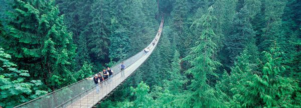 Chasm Photograph - Capilano Bridge, Suspended Walk by Panoramic Images