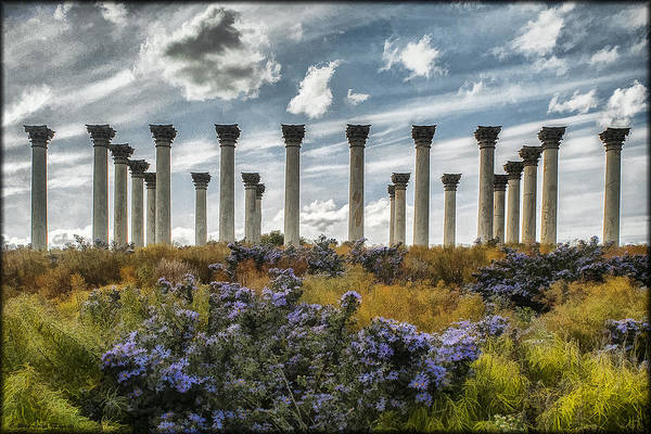 Photograph - Capitol Columns In Watercolor by Erika Fawcett
