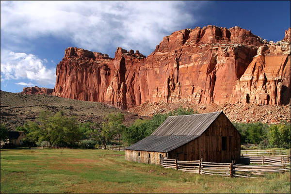 Photograph - Capitol Reef Homestead by Wes and Dotty Weber