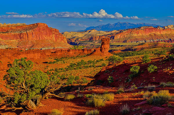 Art Print featuring the photograph Capitol Reef Landscape by Greg Norrell
