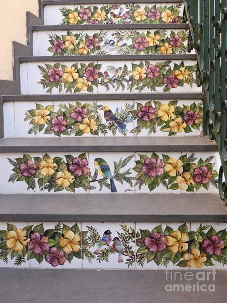 Photograph - Capri Tiled Staircase With Birds by Brenda Kean