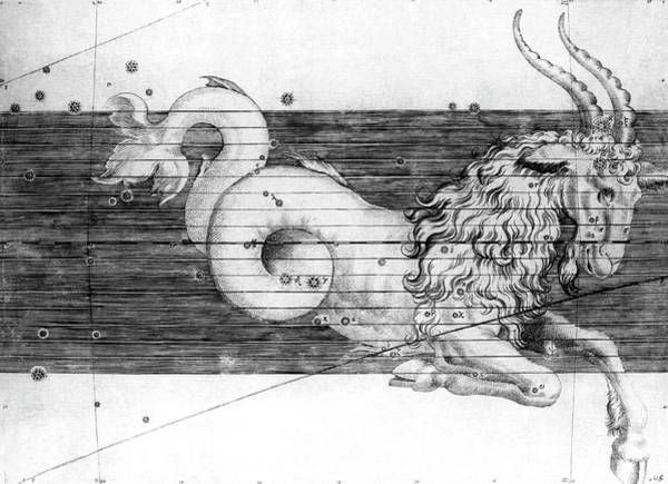 1600s Wall Art - Photograph - Capricorn Constellation by Royal Astronomical Society/science Photo Library