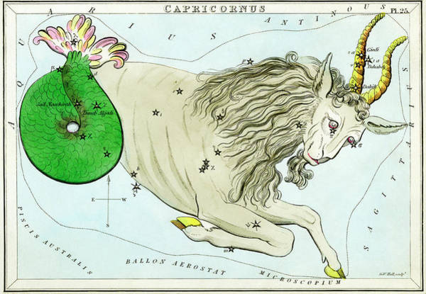 Mythological Photograph - Capricornus Constellation by Royal Astronomical Society/science Photo Library