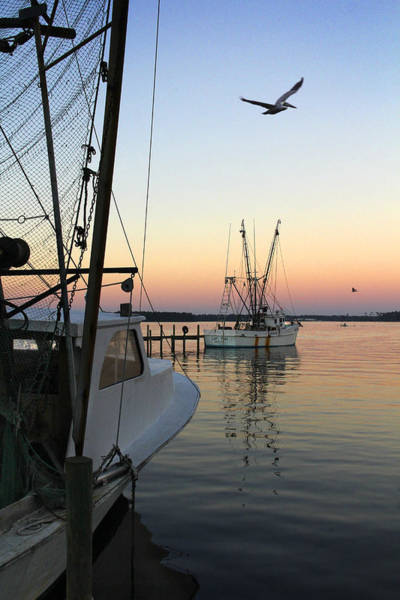 Shrimp Boat Wall Art - Photograph - Captain Tony - In For The Night by Mike McGlothlen