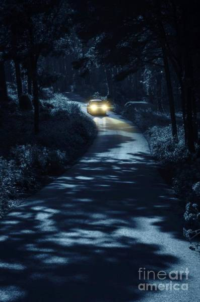 Wall Art - Photograph - Car In The Woods by Carlos Caetano