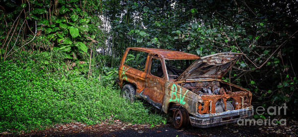 Photograph - Car Trouble On The Road To Hana by Edward Fielding