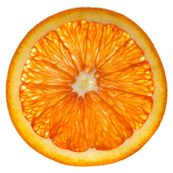 Wall Art - Photograph - Cara Cara Orange Slice by Steve Gadomski