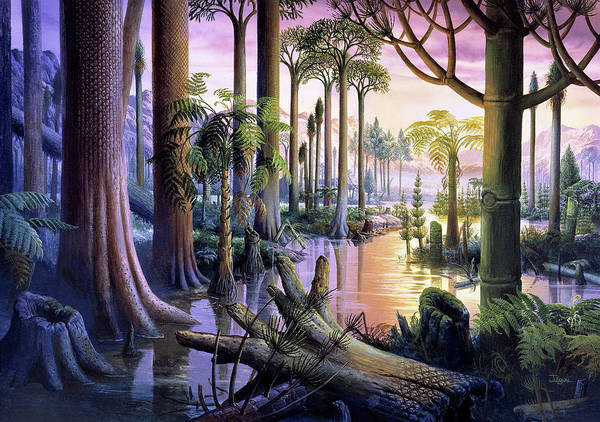 Palaeontology Wall Art - Photograph - Carboniferous Forest by Christian Jegou Publiphoto Diffusion/ Science Photo Library
