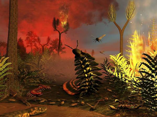 Wall Art - Photograph - Carboniferous Forest Fire, Artwork by Science Photo Library