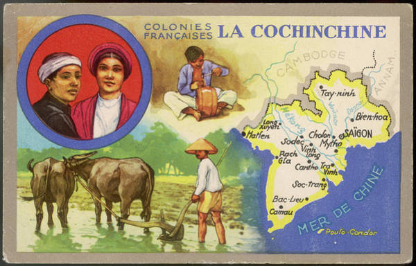 Vietnam Drawing - Card Produced When 'la  Cochinchine' by Mary Evans Picture Library
