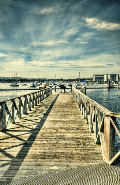Swan Boats Photograph - Cardiff Bay Wetlands 2 by Steve Purnell