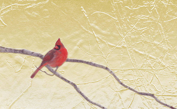 Cardinal Mixed Media - Cardinal In Gold Leaf by Steve Karol