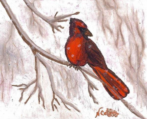 Drawing - Cardinal In The Snow by Neil Stuart Coffey