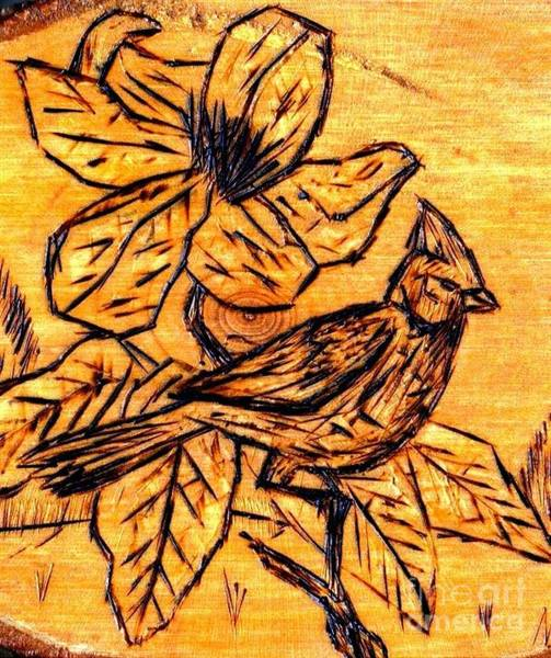 Pyrography - Cardinal In The Spring by Neil Stuart Coffey