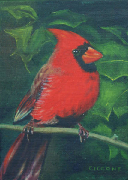 Painting - Cardinal by Jill Ciccone Pike