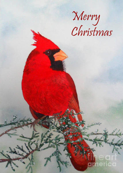 Painting - Cardinal Merry Christmas by Laurel Best