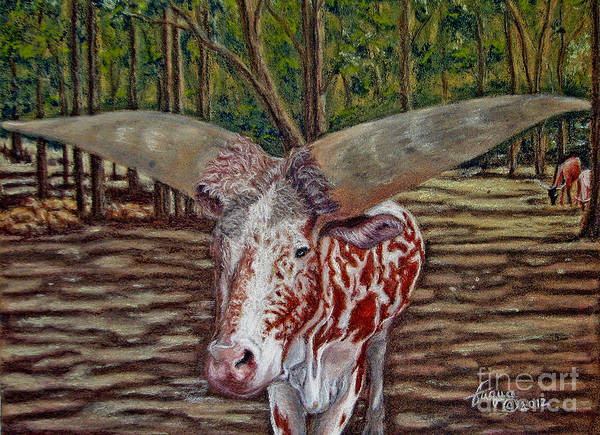 Wall Art - Drawing - Careful About Tooting Your Own Horns by Beverly Fuqua