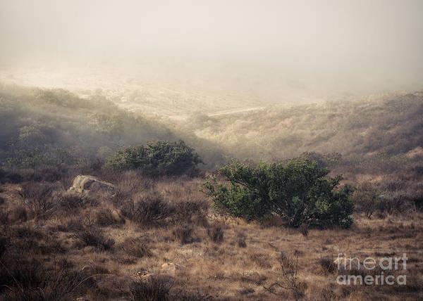 Photograph - Caress Of Light by Alexander Kunz