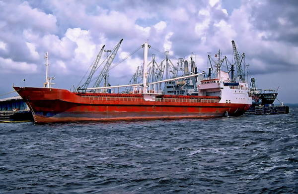 Photograph - Cargo Ship by Anthony Dezenzio