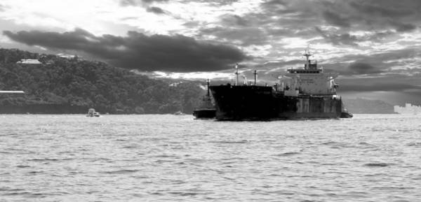 Photograph - Cargo Ship On Sydney Harbour Black And White by David Rich