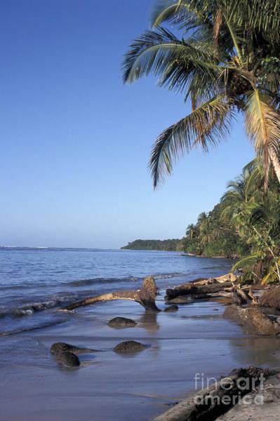Cahuita Photograph - Caribbean Beach Costa Rica by John  Mitchell