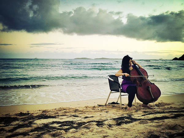 Photograph - Caribbean Cello by Natasha Marco