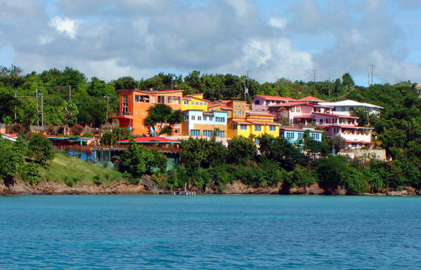 Photograph - Caribbean Colors by Donna Proctor