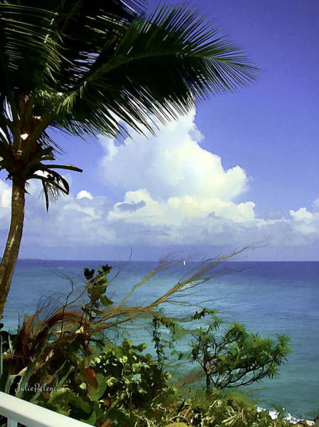 Photograph - Caribbean Day by Julie Palencia