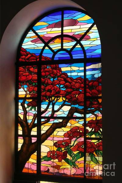 Photograph - Caribbean Stained Glass  by The Art of Alice Terrill