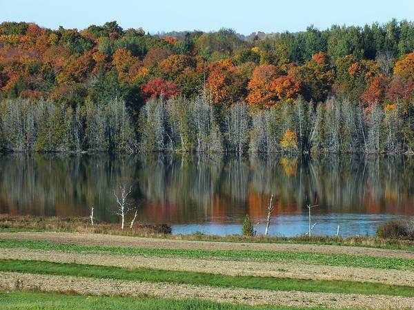 Aroostook County Photograph - Caribou Lake Reflected by Gene Cyr