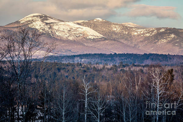 Photograph - Caribou-speckled Mountain Wilderness by Susan Cole Kelly