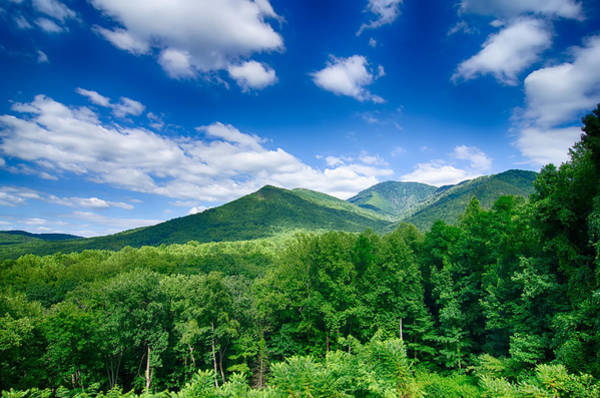 Photograph - Carlos Campbell Overlook In Great Smoky Mountains  by Alex Grichenko