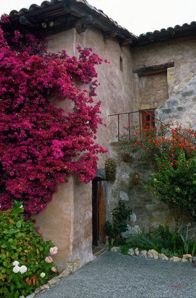Carmel Mission Photograph - Carmel Mission With Bougainvillea by Kathy Yates