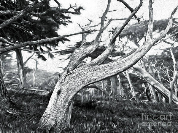 Painting - Carmel - Seventeen Mile Drive - 04 by Gregory Dyer