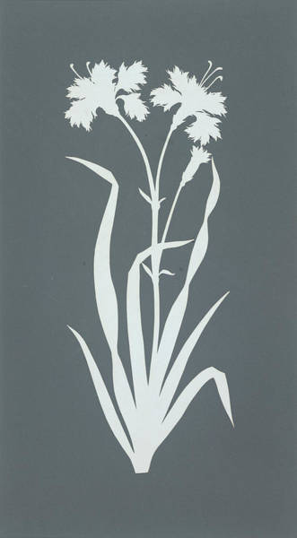 Monochromatic Painting - Carnation  by Philipp Otto Runge