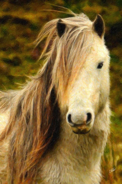 Painting - Carneddau Pony by Dean Wittle