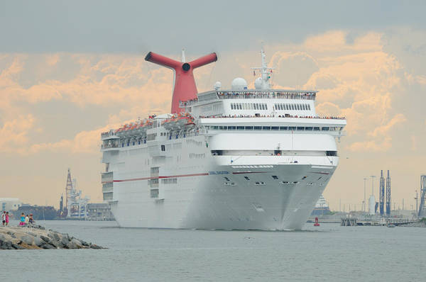 Photograph - Carnival Sensation by Bradford Martin