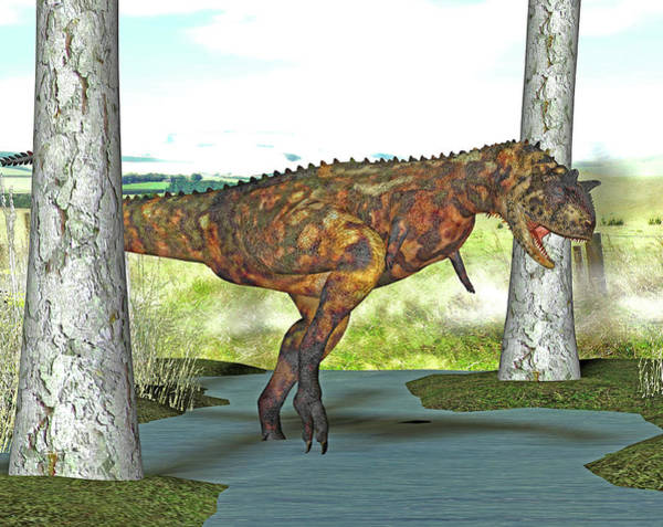 Paleozoology Wall Art - Photograph - Carnotaurus Dinosaur by Friedrich Saurer