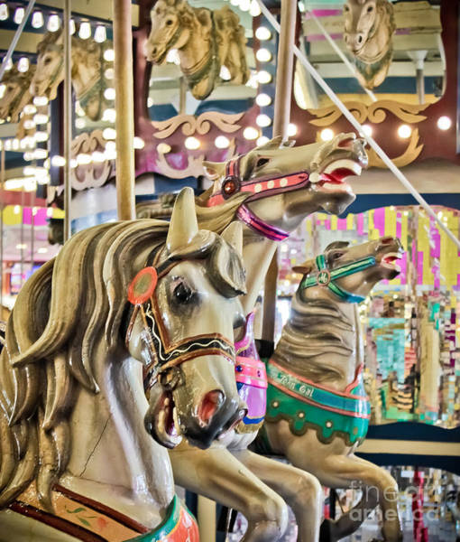 Kammerer Wall Art - Photograph - Carousel At Casino Pier by Colleen Kammerer