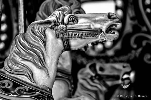 Photograph - Carousel Horse - Bw by Christopher Holmes